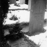 Grave1941sm